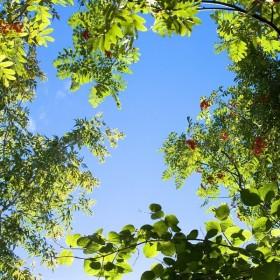 Natura Sky plafond lumineux